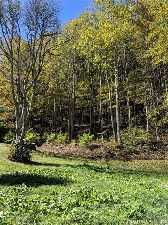 Lot #3 Water Dog Lane, Elk Park, NC 28622 (MLS #210796) :: RE/MAX Impact Realty
