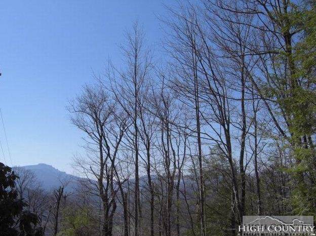 #21 Boxwood, Boone, NC 28607 (MLS #211221) :: Keller Williams Realty - Exurbia Real Estate Group