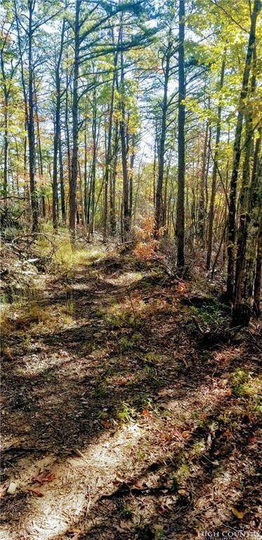 Lot 69 Pimpernel Way, Boone, NC 28607 (MLS #211404) :: Keller Williams Realty - Exurbia Real Estate Group