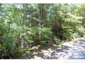 192 Goldfinch Road, Newland, NC 28657 (MLS #212127) :: RE/MAX Impact Realty