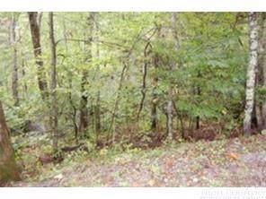 128 Ivy Road, Newland, NC 28657 (MLS #212139) :: RE/MAX Impact Realty
