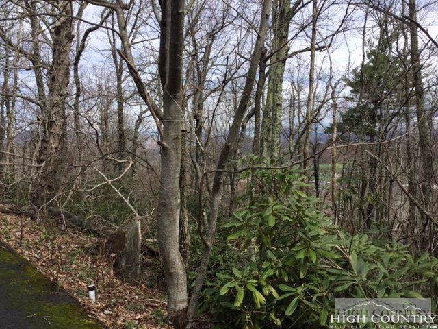 Lot 28 Milton Brown Heirs Road, Boone, NC 28607 (#212557) :: Mossy Oak Properties Land and Luxury