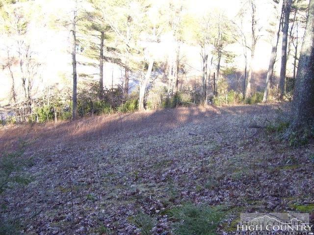 TBD Farm Valley Lane, Boone, NC 28607 (#212729) :: Mossy Oak Properties Land and Luxury