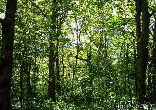 TBD Lot 34 Pinnacle Dr. Drive, West Jefferson, NC 28694 (MLS #213372) :: RE/MAX Impact Realty