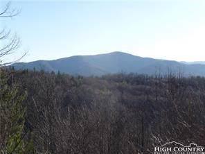 Lot 79 Bear Creek Lane, Elk Park, NC 28622 (MLS #213756) :: RE/MAX Impact Realty