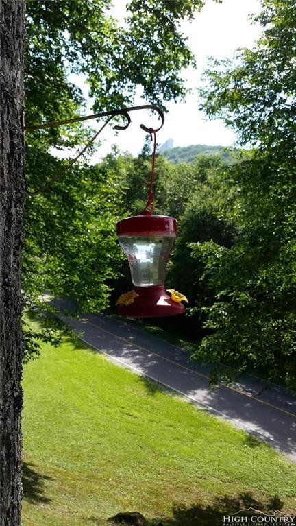 227 Dell Road, Sugar Mountain, NC 28604 (MLS #213778) :: RE/MAX Impact Realty