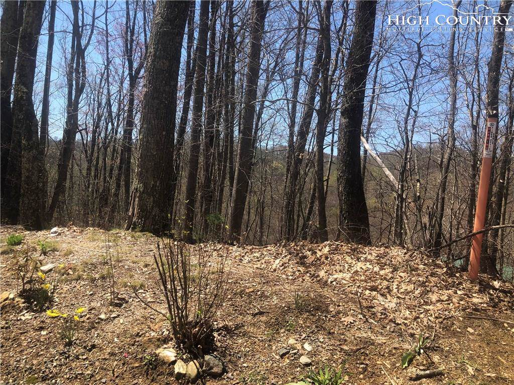lot 20 Carefree Cove Road, Zionville, NC 28698 (MLS #213849) :: RE/MAX Impact Realty