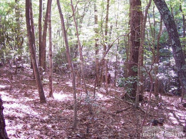 Tbd Cheery Lane, Deep Gap, NC 28618 (MLS #213964) :: RE/MAX Impact Realty