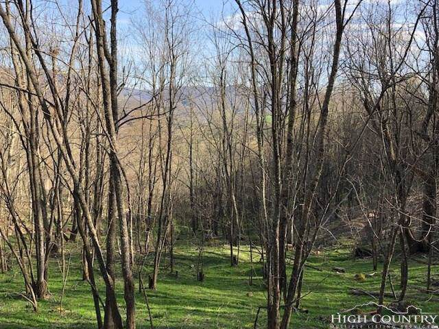 Lot 11 Fox Meadow Road, Banner Elk, NC 28604 (MLS #214226) :: RE/MAX Impact Realty