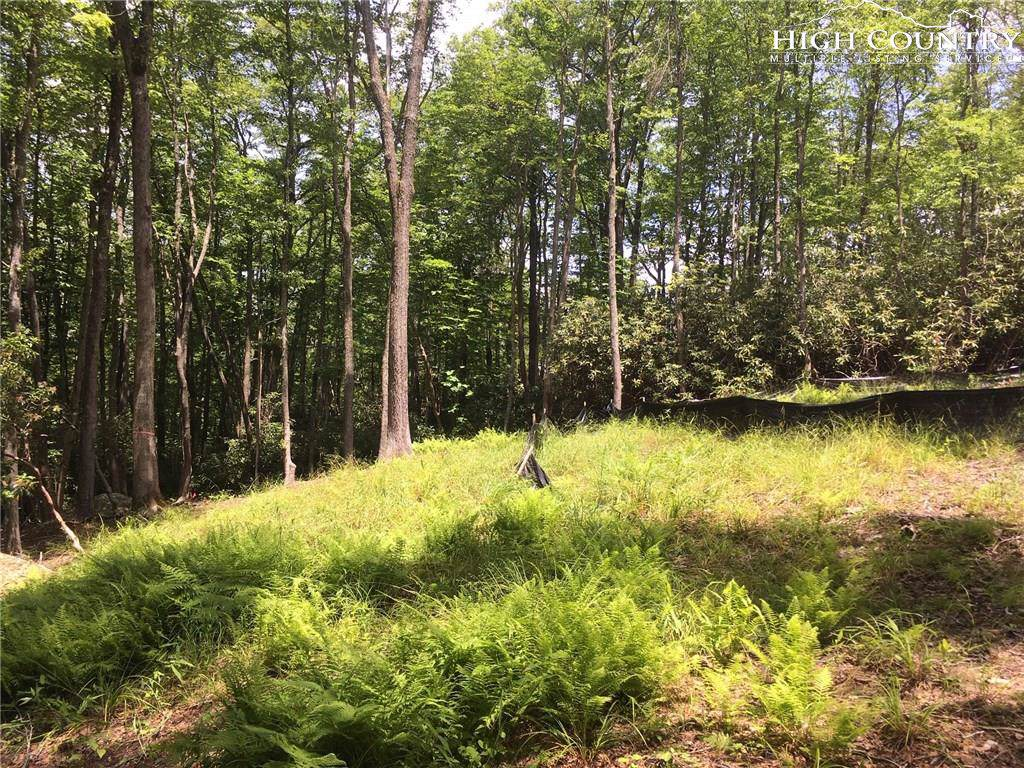 Lot 28 Twin Branches Road, Blowing Rock, NC 28605 (MLS #214345) :: RE/MAX Impact Realty
