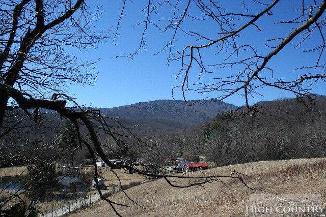 Lot 24 Etowah Place, Blowing Rock, NC 28605 (MLS #214381) :: RE/MAX Impact Realty
