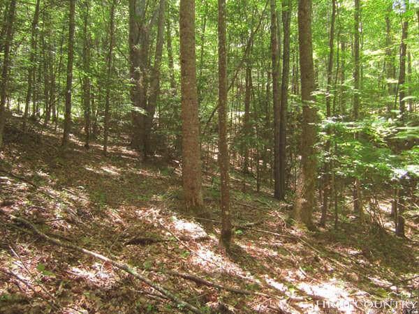 147 Raccoon Road, Beech Mountain, NC 28604 (MLS #214475) :: RE/MAX Impact Realty