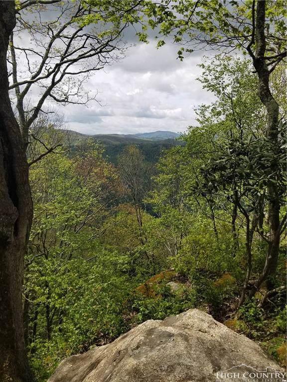 L-59 Eagles Cliff Trail, Banner Elk, NC 28604 (MLS #214637) :: RE/MAX Impact Realty