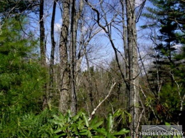 Lot 33 & 34 Charlie Lane, West Jefferson, NC 28694 (MLS #214926) :: RE/MAX Impact Realty