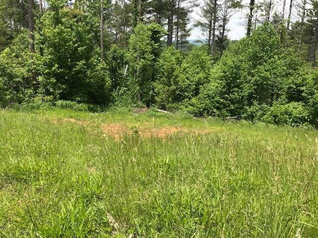 Lot 17 Alpine Way, Todd, NC 28684 (MLS #215083) :: RE/MAX Impact Realty