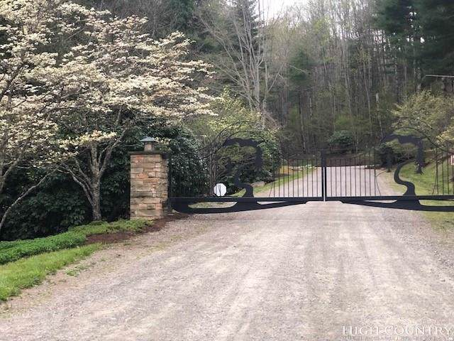 lot 17 Carefree Cove Road, Zionville, NC 28698 (MLS #215096) :: RE/MAX Impact Realty