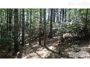 Lot 20 High Meadows Lane, Fleetwood, NC 28626 (MLS #215528) :: RE/MAX Impact Realty