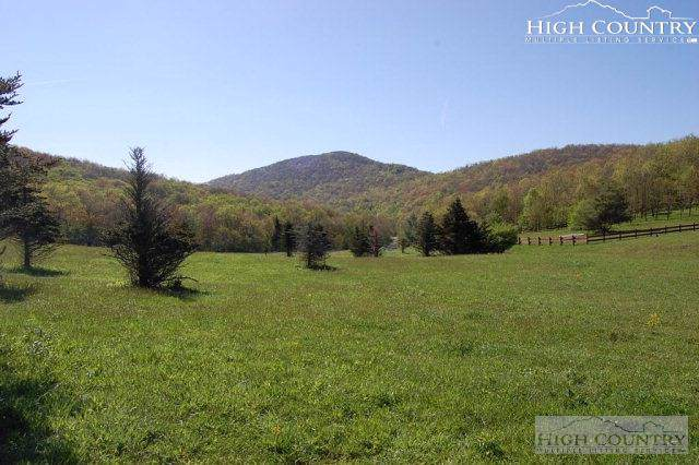 Tbd Woodland Springs Lane, Boone, NC 28607 (MLS #215757) :: RE/MAX Impact Realty