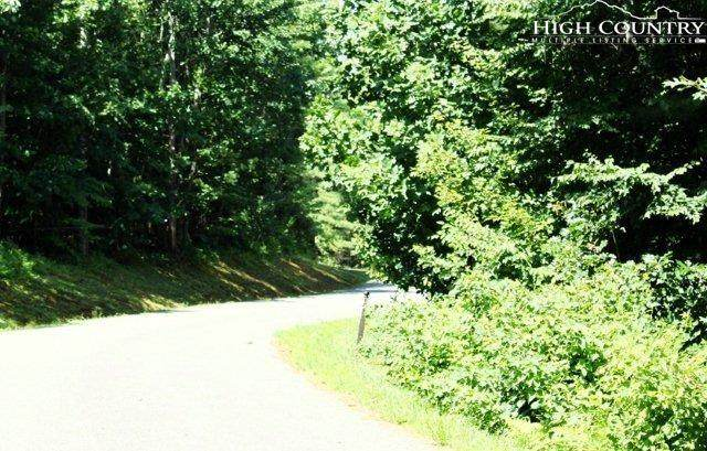 Lot 47 Woodland Valley Road, Jefferson, NC 28640 (MLS #216668) :: RE/MAX Impact Realty