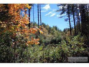 Lot 28 Wolfpack Drive, West Jefferson, NC 28694 (MLS #216774) :: RE/MAX Impact Realty