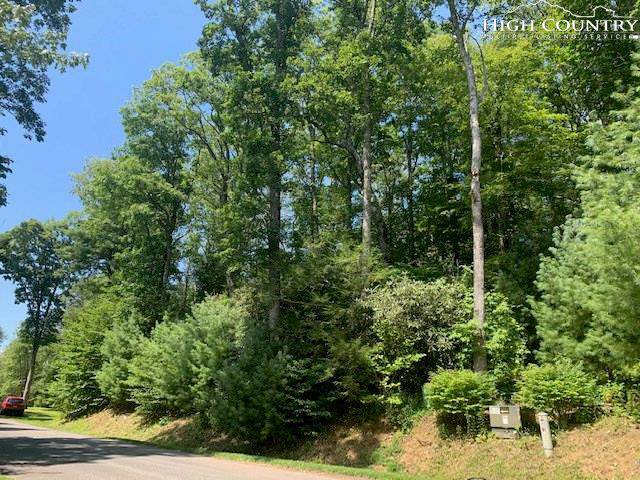 23 Black Bear Trail, Linville, NC 28646 (MLS #217015) :: RE/MAX Impact Realty