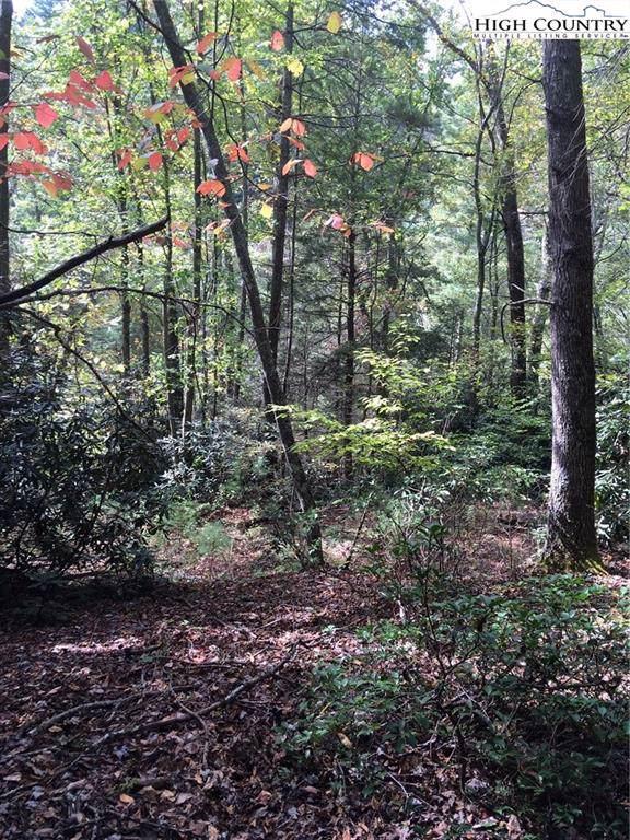 TBD Brownwood Road, Deep Gap, NC 28618 (MLS #217020) :: RE/MAX Impact Realty