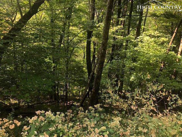 lot 39 Rainbow Ridge Road, Zionville, NC 28698 (MLS #217526) :: RE/MAX Impact Realty