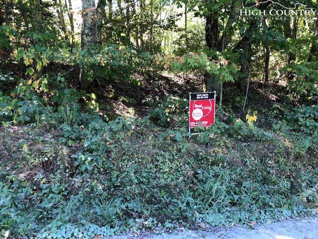 489 Old Mountain Road, Beech Mountain, NC 28604 (MLS #217644) :: RE/MAX Impact Realty