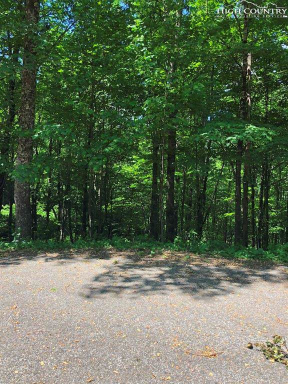 #23 Woodland Way, West Jefferson, NC 28694 (MLS #217785) :: RE/MAX Impact Realty