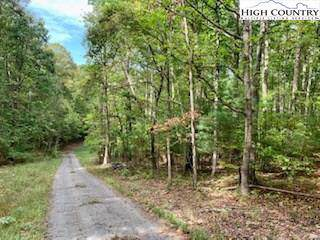 TBD Walnut Hills, Crumpler, NC 28617 (#218300) :: Mossy Oak Properties Land and Luxury
