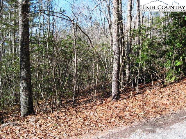 18 Goldfinch Road, Newland, NC 28657 (MLS #218449) :: RE/MAX Impact Realty