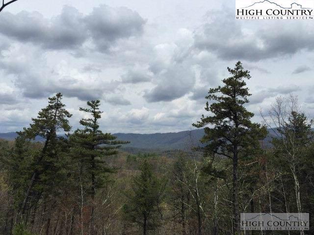 191 Marigold Road, Boone, NC 28607 (MLS #219232) :: RE/MAX Impact Realty