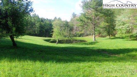 47 Brightwater (9+ Acres) Trail, West Jefferson, NC 28694 (MLS #219752) :: RE/MAX Impact Realty