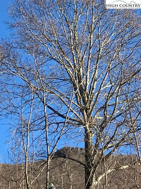 Lot 3 Quail Trail, Zionville, NC 28698 (#222249) :: Mossy Oak Properties Land and Luxury