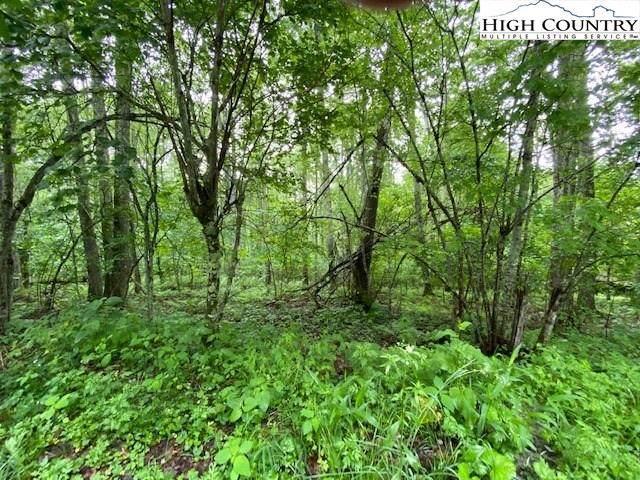Lot 6 Valle Vista Drive, Banner Elk, NC 28607 (#222707) :: Mossy Oak Properties Land and Luxury