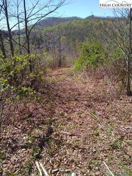 TBD Dave's Connector Highway, Jefferson, NC 28640 (#223909) :: Mossy Oak Properties Land and Luxury