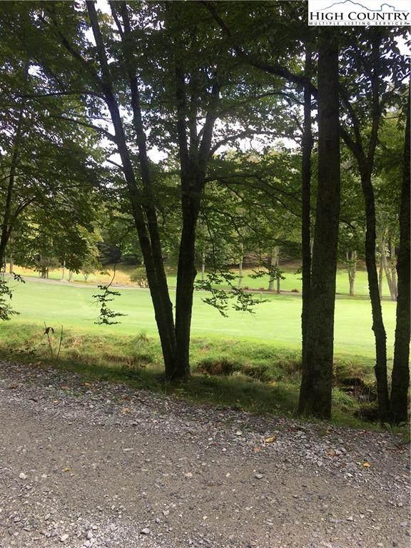 115 Briarcliff Road, Beech Mountain, NC 28604 (#224436) :: Mossy Oak Properties Land and Luxury