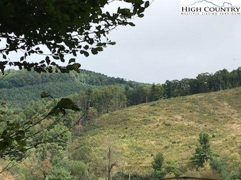 Lot 25 Rhododendron Run, Fleetwood, NC 28626 (#224950) :: Mossy Oak Properties Land and Luxury