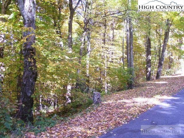 21 Fairway Ridge Drive, West Jefferson, NC 28694 (#226295) :: Mossy Oak Properties Land and Luxury
