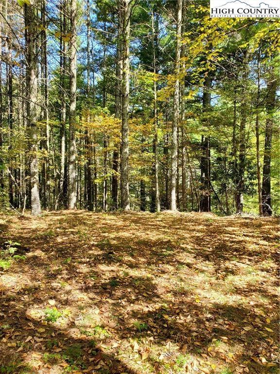 TBD Lower Nettle Knob Road, West Jefferson, NC 28694 (#226370) :: Mossy Oak Properties Land and Luxury