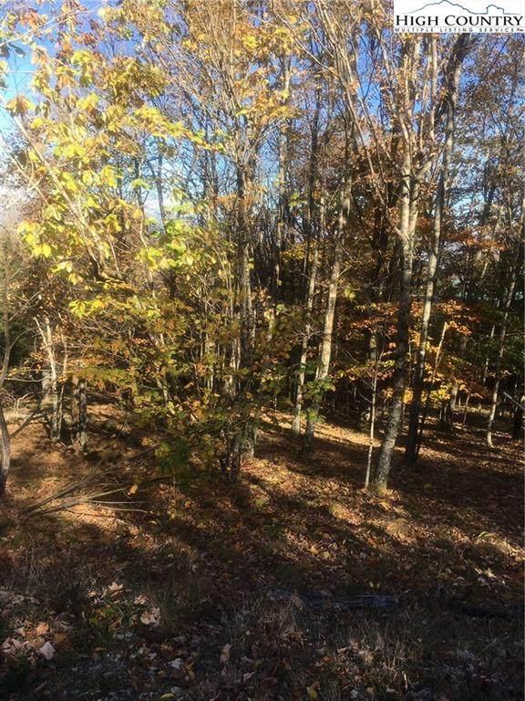 123 Briarwood Lane, Beech Mountain, NC 28604 (#226398) :: Mossy Oak Properties Land and Luxury