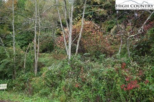 Tbd Chestnut Creek Road, West Jefferson, NC 28694 (#226492) :: Mossy Oak Properties Land and Luxury