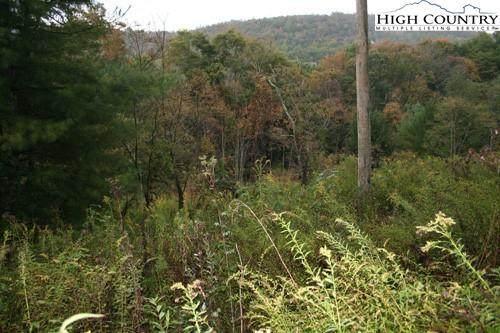 Tbd Chestnut Creek Road, West Jefferson, NC 28694 (#226540) :: Mossy Oak Properties Land and Luxury