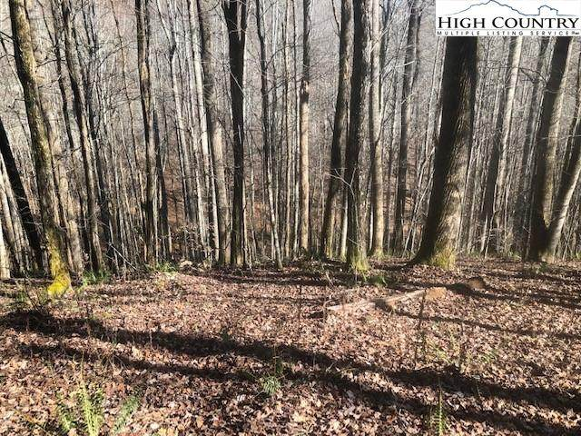 lot 58 Carefree Cove Road, Zionville, NC 28698 (#226926) :: Mossy Oak Properties Land and Luxury
