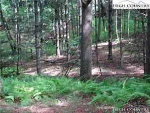 Lot 2 Cranberry Meadows Drive, Scottville, NC 28672 (#227672) :: Mossy Oak Properties Land and Luxury