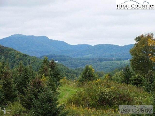 Tbd Timberwilde Road, Laurel Springs, NC 28644 (#227687) :: Mossy Oak Properties Land and Luxury