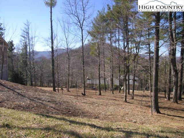 Tbd Holly Lane, Blowing Rock, NC 28605 (#228263) :: Mossy Oak Properties Land and Luxury