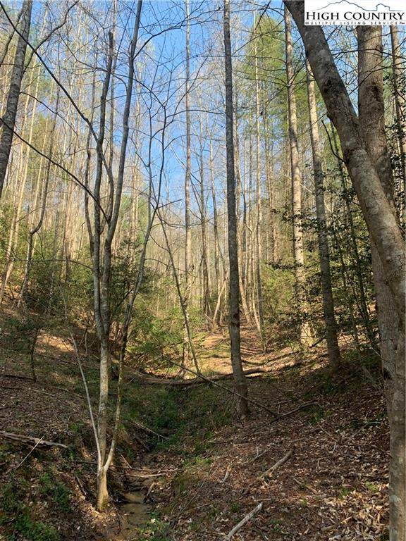 TBD 0 Vannoy Road, Millers Creek, NC 28651 (MLS #229708) :: RE/MAX Impact Realty