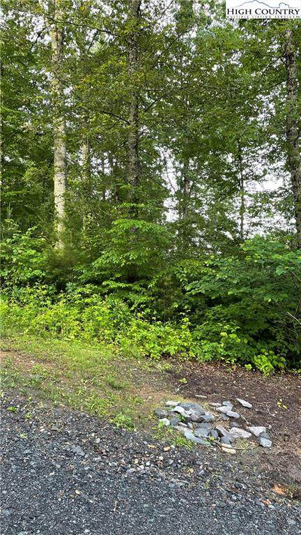 Lot 29 Riverstone Drive, Laurel Springs, NC 28644 (#231028) :: Mossy Oak Properties Land and Luxury
