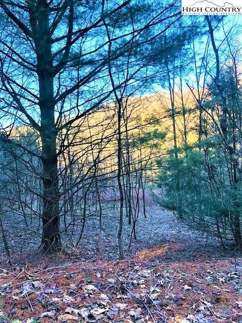 Lots 9 & 10 Chestnut Creek Rd., West Jefferson, NC 28694 (#231928) :: Mossy Oak Properties Land and Luxury